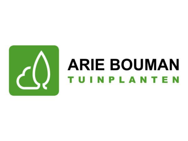 Arie Bouman